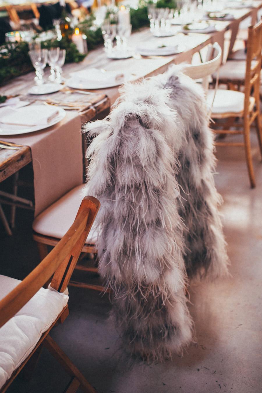 calista-one-lista-de-bodas-online-blog-de-bodas-inpisracion-bodas-sara-birds-6