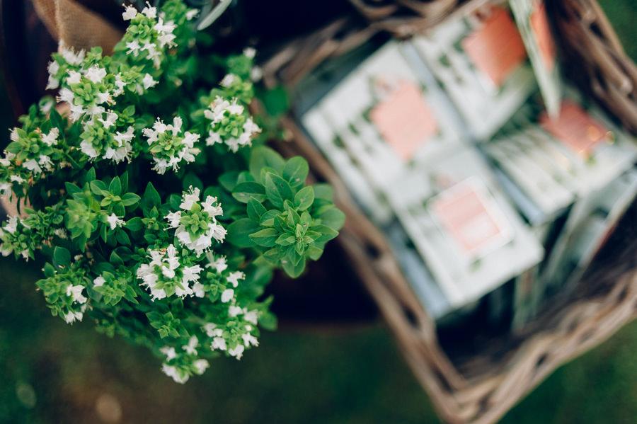 Aromatizar boda pomelo y albahaca 12