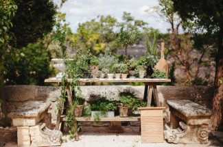 Seating plan boda botánico para tu boda con plantas
